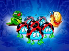 Beetle Mania kostenlos – die Glückskäfer